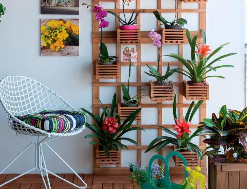 Inspirações: Jardim Vertical para sua casa
